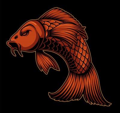Vector illustration of koi carp