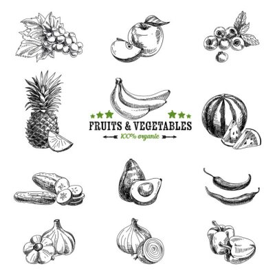 Plakat Vector set of fruit and vegetables.