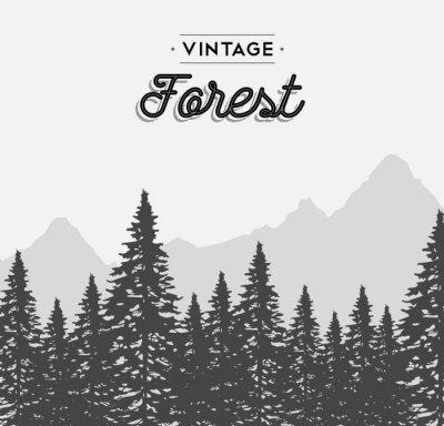 Plakat Vintage etykiety tekstowe lasów na zimowy krajobraz drzewa
