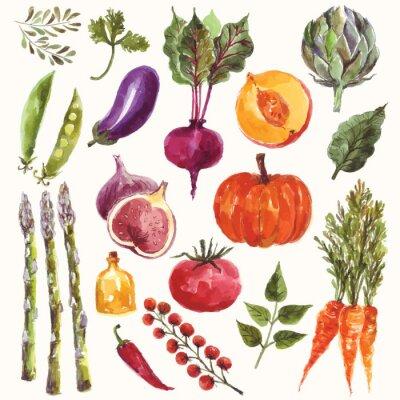 Plakat Warzywa i owoce akwarelowe