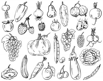 Plakat warzywa, owoce i jagody