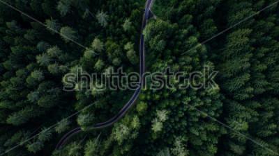 Plakat Wąska ulica między lasem, widok trutnia