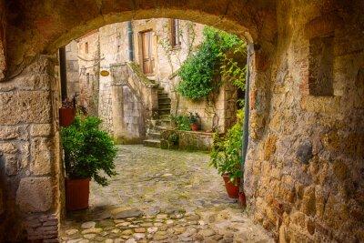 Plakat Wąska ulica średniowiecznych tuf miasta Sorano z łuku, zielone rośliny i brukowiec, tło podróży Włochy
