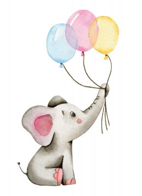 Plakat Watercolor cute elephant holds the trunk of multi-colored balloons isolated on white background.