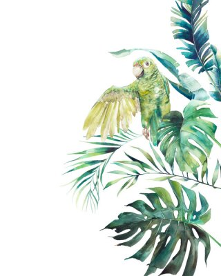 Plakat Watercolor green parrot frame. Hand drawn greeting card design with exotic leaves and branches isolated on white background. Palm tree, banana leaves, mostera plants