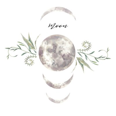 Plakat Watercolor moon and plants label. Isolated logo design with plants and lunar silhouette