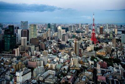 Plakat Widok miasta Tokio