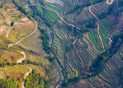 Plakat Widok z lotu ptaka na polach ryżowych w pobliżu Pokhara