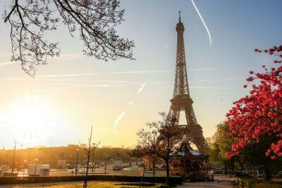 Plakat Wieża Eiffla z drzewa wiosny w Paryżu, Francja