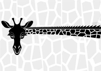 Plakat Wildlife
