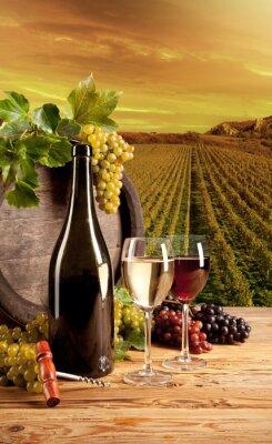Plakat Wino w winnicy