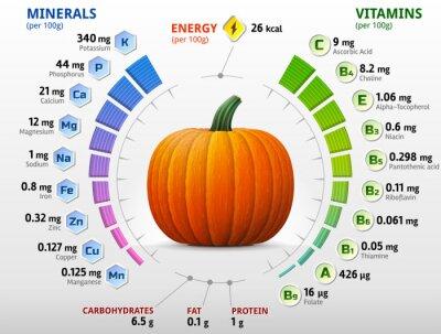 Plakat Witaminy i składniki mineralne z dyni. Składniki odżywcze dyni