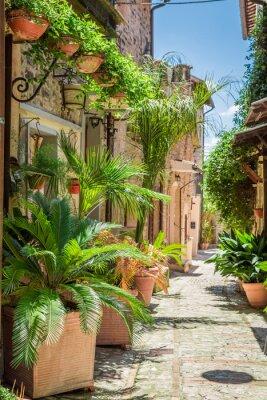 Plakat Wspaniałe urządzone ulicy w małym miasteczku we Włoszech, w Umbrii