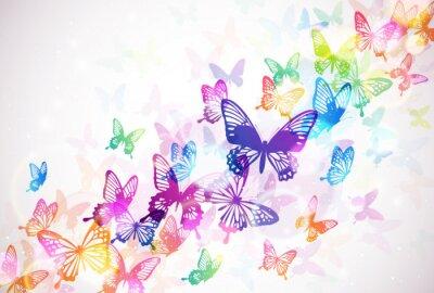 Plakat 蝶 々