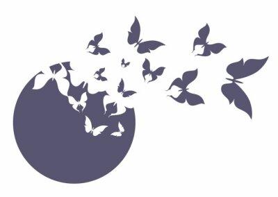 Plakat Бабочка