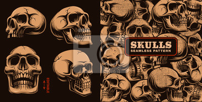 Plakat Zbiór różnych czaszek z wzór.