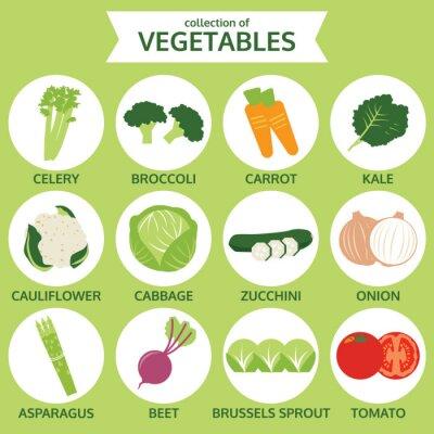 Plakat zbiory warzyw, ilustracji wektorowych żywności, zestaw ikon na