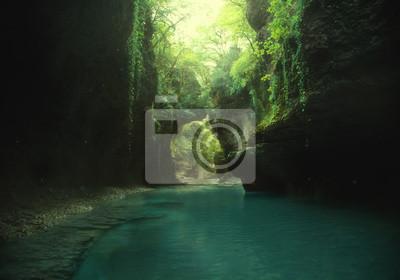 Plakat zdjęcie sztuki. bajki tła. zielona dzika dziewicza natura. podróż do Gruzji, podróż do kanionu Martvili. górskie jezioro, fantastyczne miejsce. Piękne winorośle zwisające z błękitnej wody z klifu.