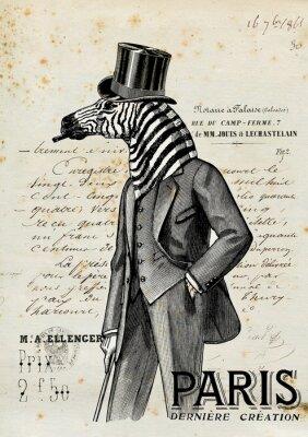 Plakat Zebra człowiek