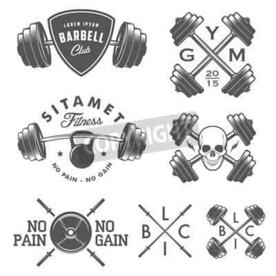 Plakat Zestaw rocznika siłowni emblematy etykiet i elementy konstrukcyjne