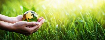Plakat Zielona planeta w Twoich rękach. Pojęcie środowiska