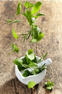 Plakat zielony zioła należących do moździerza