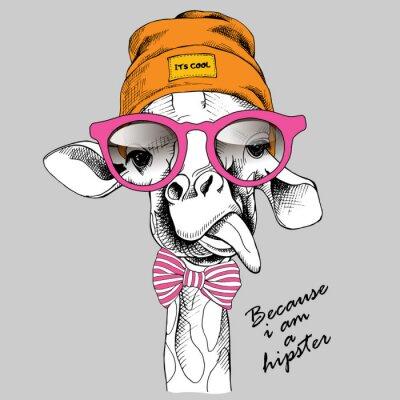 Żyrafa portret w Hipster kapelusz i okulary. ilustracji wektorowych.