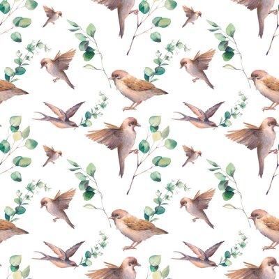 Tapeta Akwarela wiosna wzór. Wielostrzałowa tekstura z wróbli ptakami i zielenią opuszcza na białym tle.