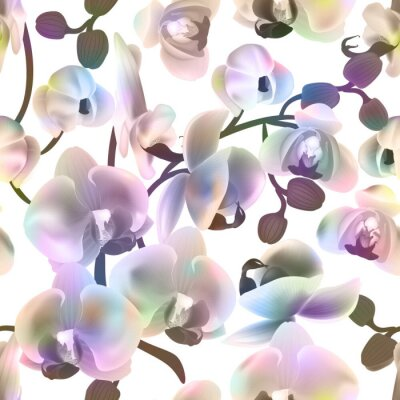 Tapeta Beautiful colorful seamless pattern with Orchid flowers . Vector illustration