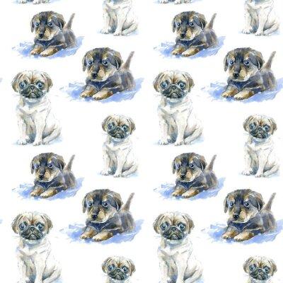 Tapeta Bez szwu deseń szczeniaka puppy i szczeniaka Jamnik szachownicę.Greeting karty pies.Domestic pet.Watercolor wyciągnąć rękę illustration.White tło.