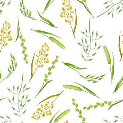 Tapeta Bez szwu deseń z ziół i trawy zbożowej. Kwiatowy ornament roślin łąkowych