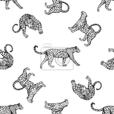 Tapeta Bezszwowe wzór szkicu lampartów. Ilustracja wektora samodzielnie na białym tle.