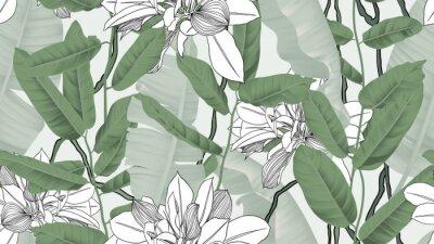 Tapeta Botaniczny wzór, liście bananowca, winorośli i inne liście na jasnozielonym tle