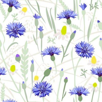 Tapeta Chaber field - bez szwu. Wyciągnąć rękę wektor kwiatowy wzór z niebieskich kwiatów i traw na białym tle.