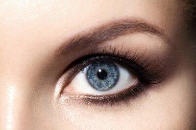 Close Up Makijaż Smoky Eyes Dla Niebieskich Oczach Z Długimi Czoło