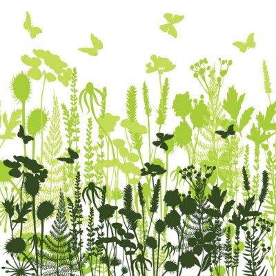 Tapeta Dekoracyjne łąki Silhouettes różnych roślin dzikich, kwiatów