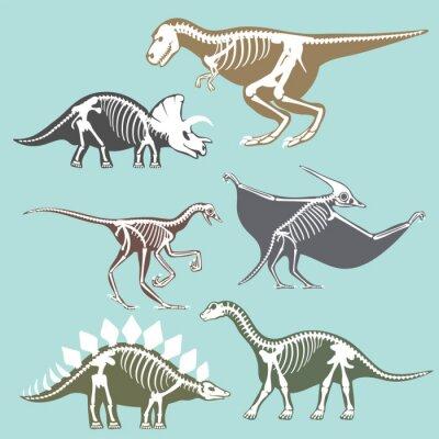 Tapeta Dinozaury szkieletów silhouettes zestaw kopalnych kości Tyrannosaurus prehistoryczne zwierząt dino kości wektora płaskie ilustracji.