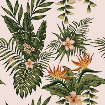 Tapeta Egzotyczne kwiaty kompozycji i roślin