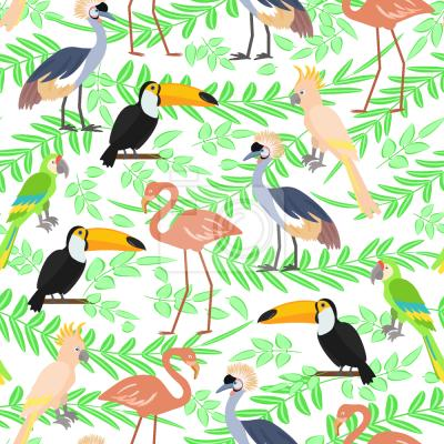 Tapeta Egzotyczne ptaki
