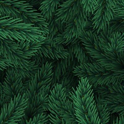Tapeta Gałęzie choinki. Świąteczne Xmas granicy zielonej gałęzi sosny.