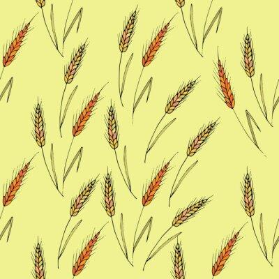 Tapeta Jednolite tło wektor ze spikelami pszenicy.