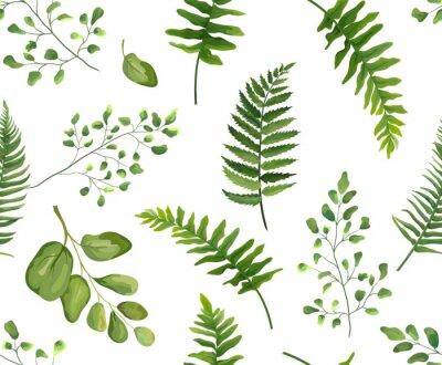 Tapeta Jednolite zieleni li? Cie botaniczne, rustykalny wzór Wektor kwiatowy wzór stylu akwarela: paproć liść paproci liść, zioła. Natura tapeta, naturalne tekstury, modny druk na białym tle