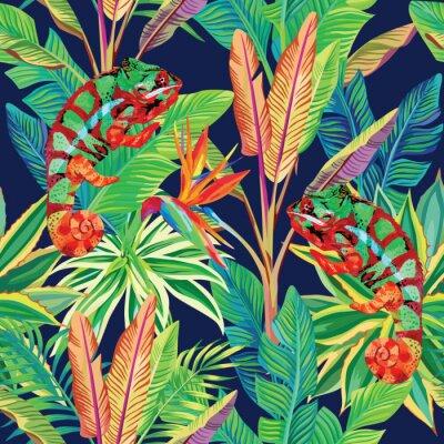 Tapeta Kameleon w dżungli bez szwu tła