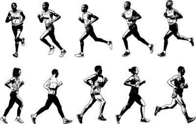 Tapeta Kolekcja biegaczy, rysunek szkicu