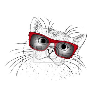 Obraz Portret Kota Z Okularami Ilustracji Wektorowych Hipster