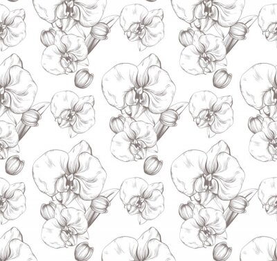 Tapeta Piękne kwiaty Orchidea Wektor