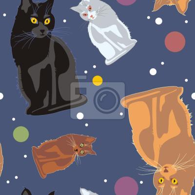 Tapeta Przestrzeń Koty