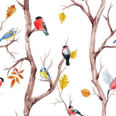 Tapeta Spadek drzew i ptaków wektora deseniu