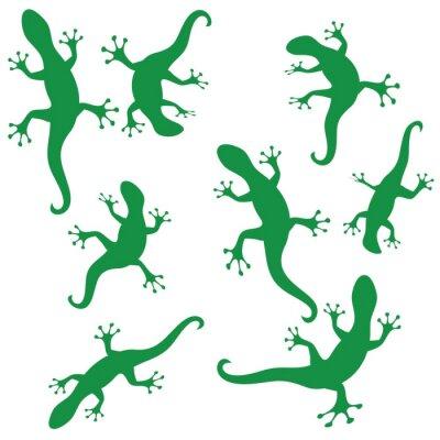 Tapeta sylwetki salamandry