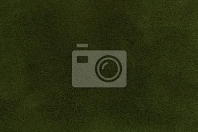 Tło Ciemnozielony Zamszowy Tkaniny Zbliżenie Aksamitna Faktura